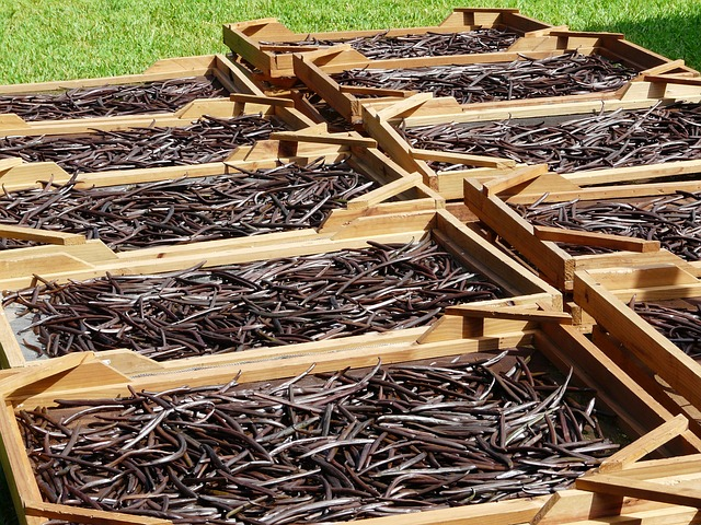 dried vanilla beans_PD