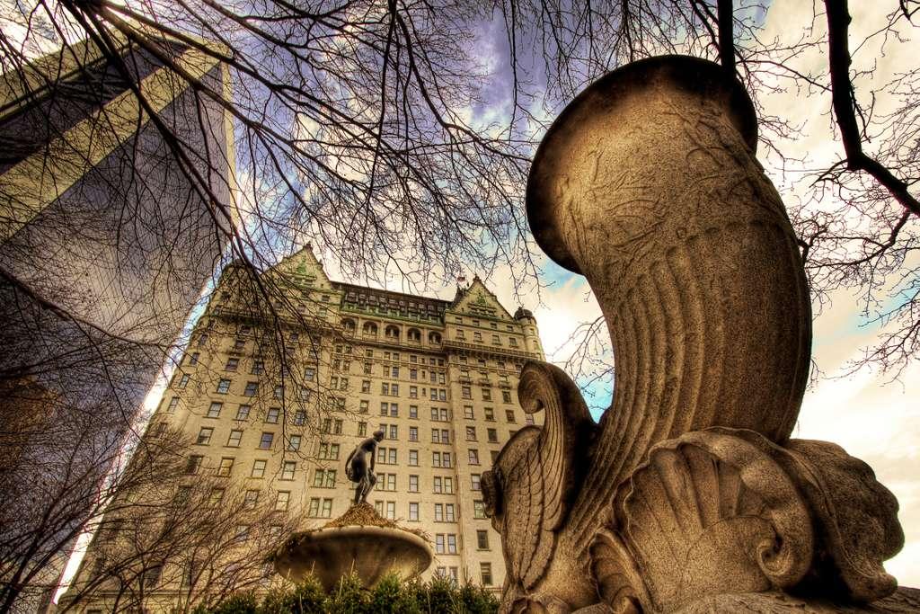 image_the_plaza_new_york_CC