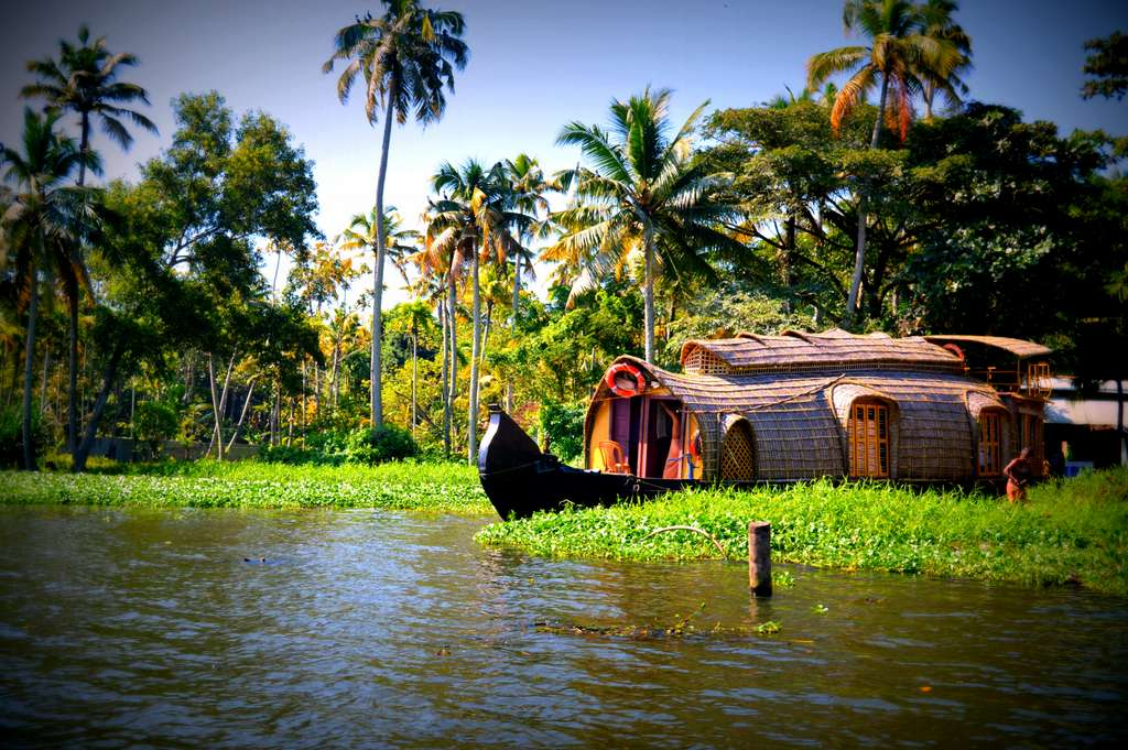 water-boats-trees-coconuts-kerala_PD