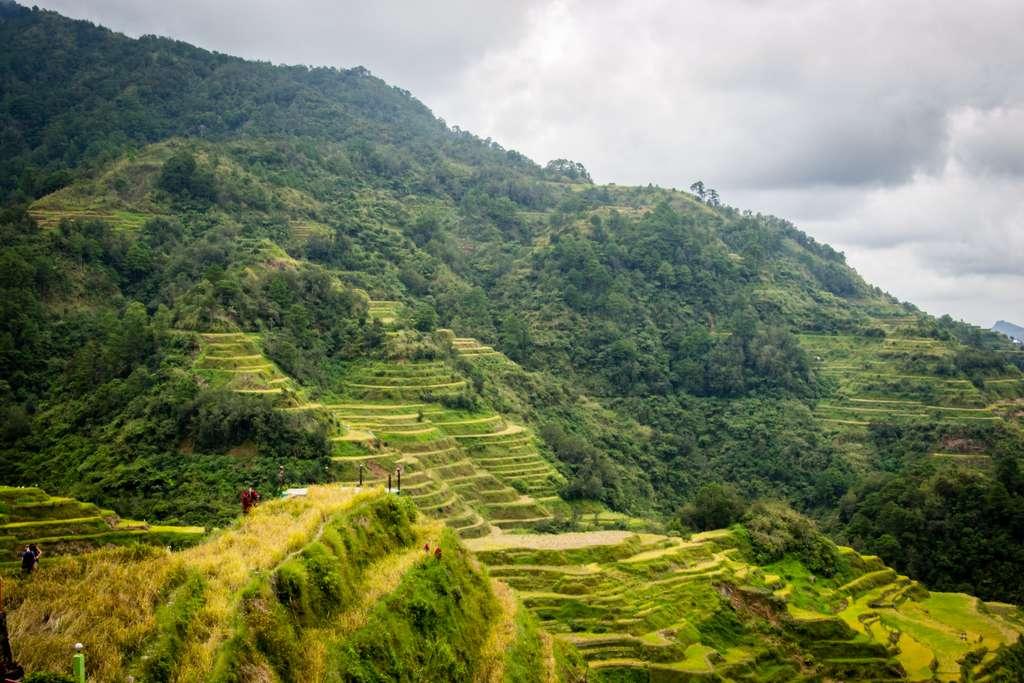 филиппины-rice-terraces-банауэ_PD