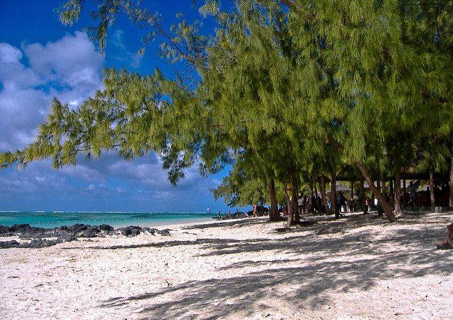 Image_coast_of_mauritius