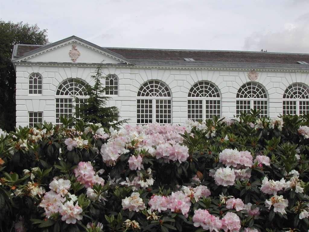 Image_Royal_Botanic_Gardens_CC