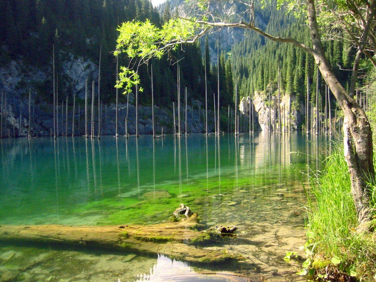 Strange Natural Wonders