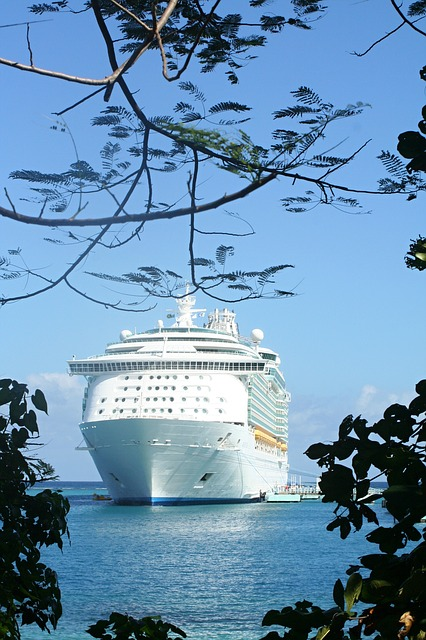 Cruise ship port_Jamaica_PD