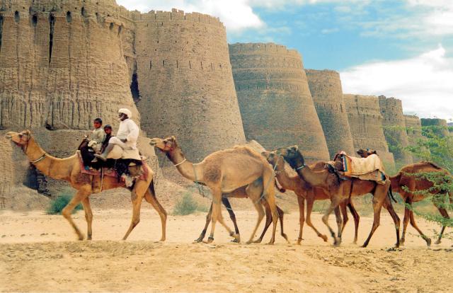 Cholistan Desert-Pakistan