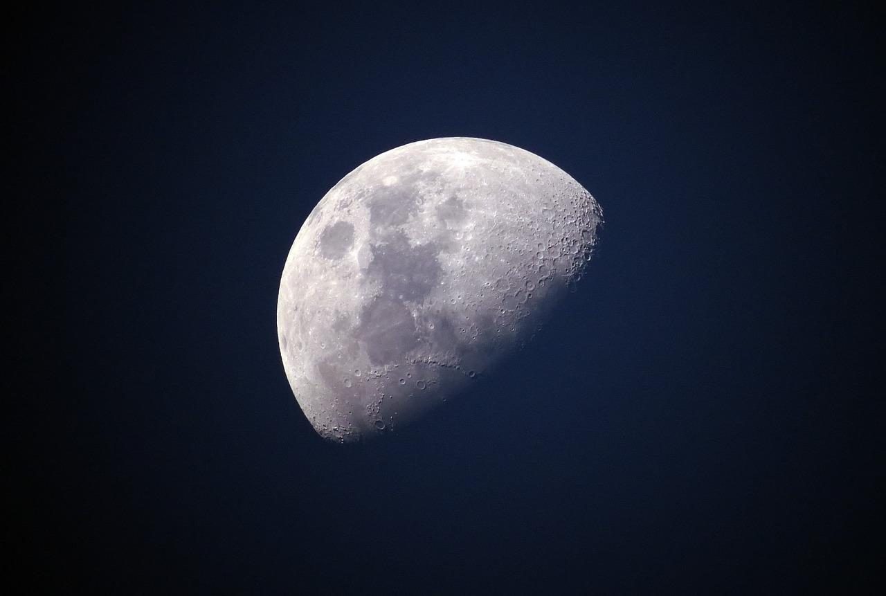 Moon Travel_to Dear Moon_PD