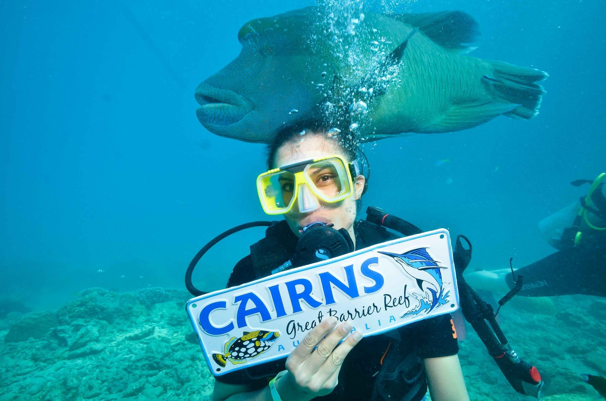 Great Barrier Reef scuba diving crains australia