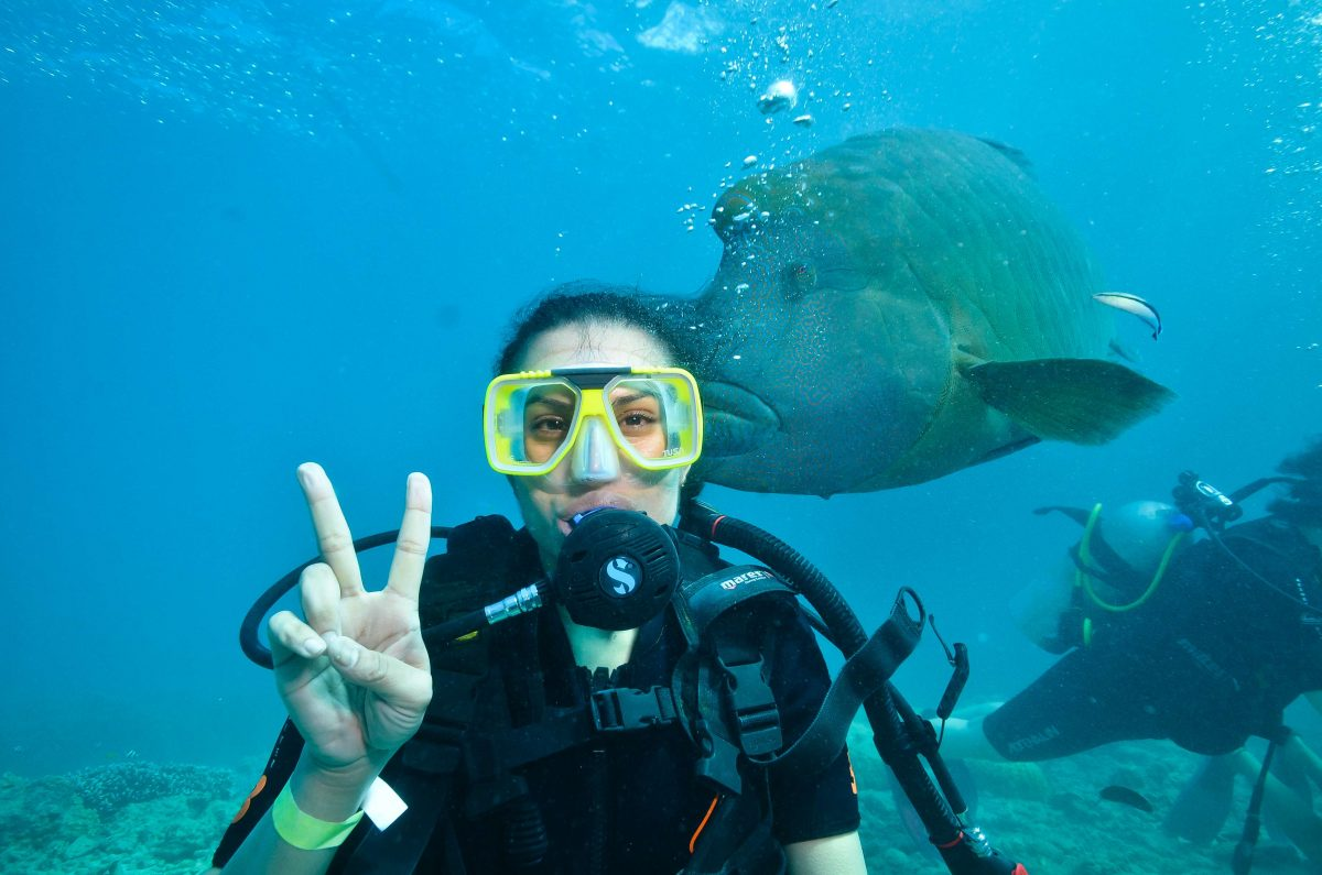 Best Underwater Adventures in the World_fish and me great barrier reef