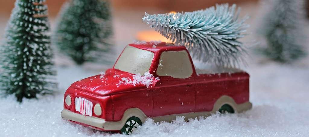 fir-tree-christmas-christmas-tree PD
