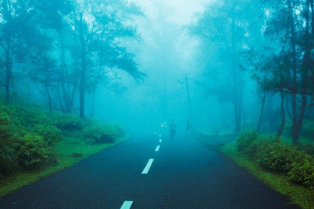 hill-station-foggy-india_nature_bali_high_shimla_day_PD