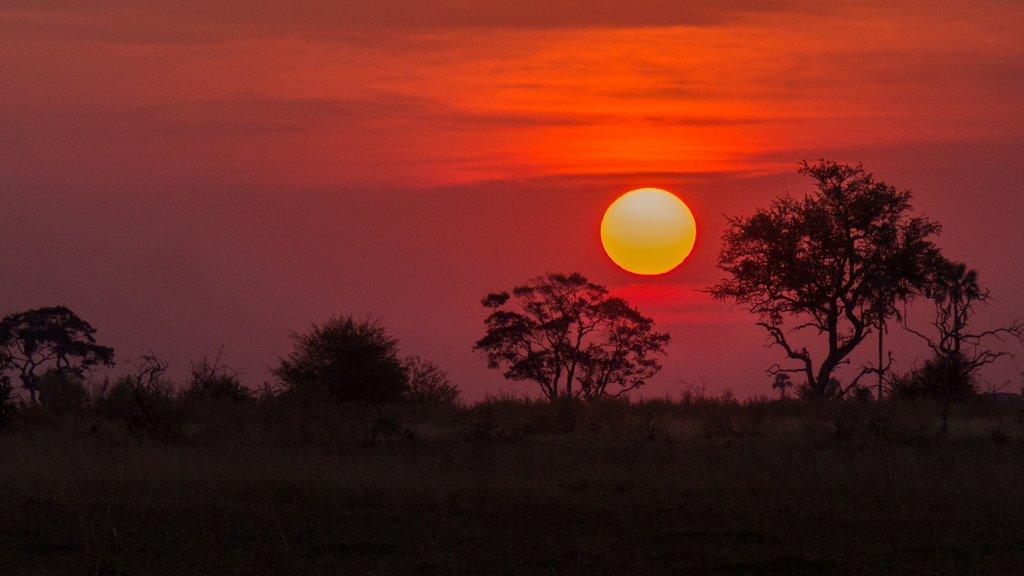 botswana-okavango-delta-sunset