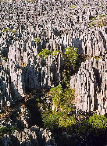 Forest of knives_Tsingy_de_Bemaraha_Madagascar_CCSA3.0