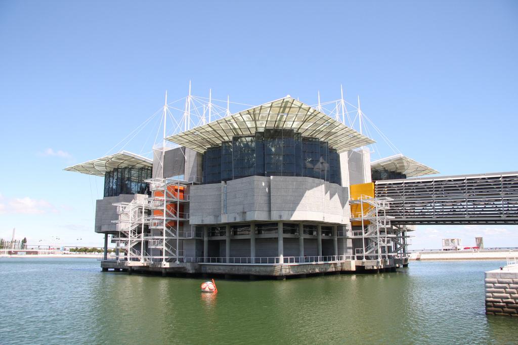 oceanario-de-lisboa-lisbon-aquarium-portugal