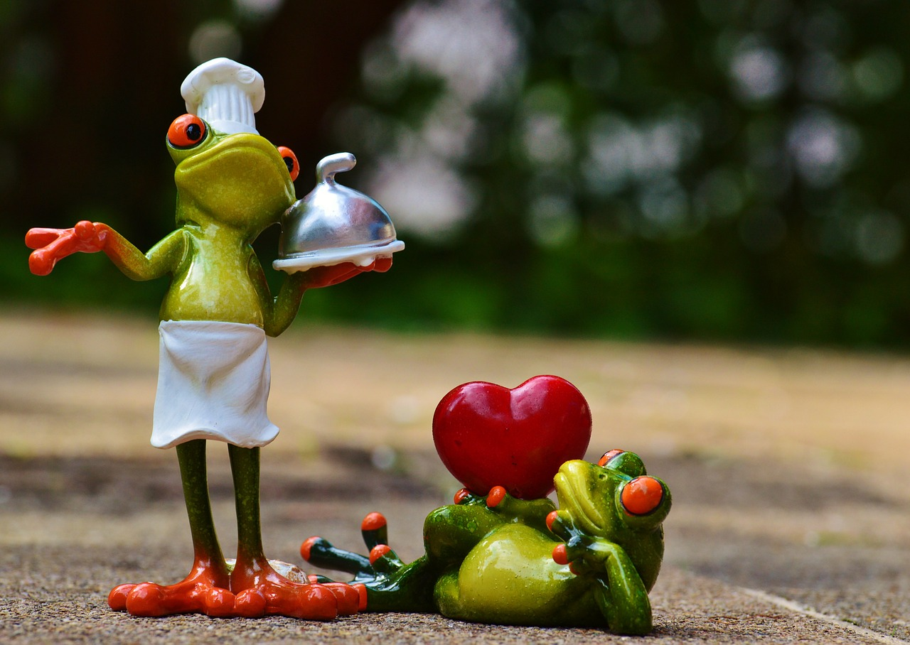 frog-cook-cooking-love-eat-food