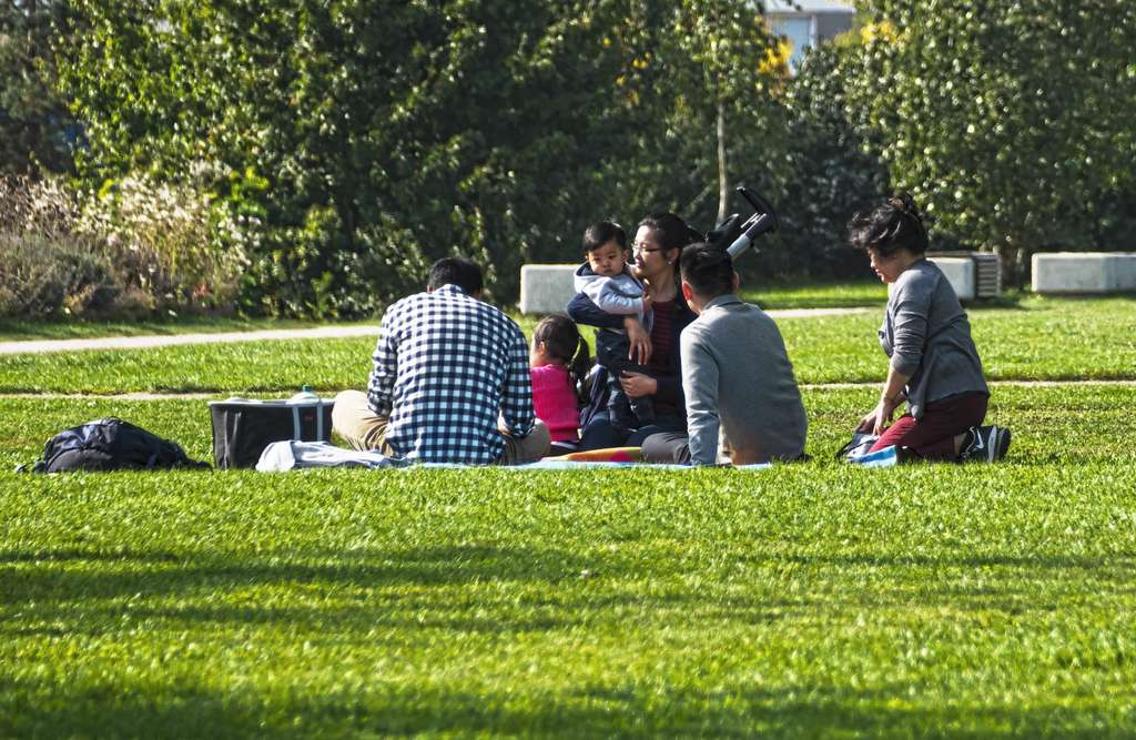 picnic-family-group-of-people-sit_PD