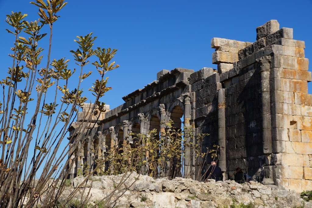 ruins-volubilis-architecture_PD