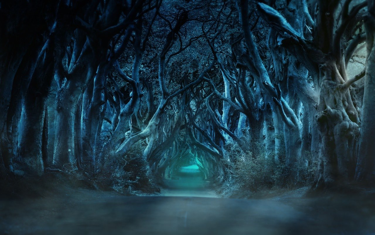 the Dark hedges_game of thrones_PD