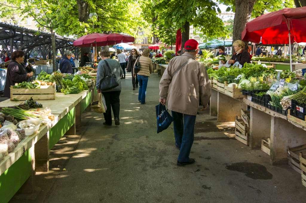 market-vegetable-market