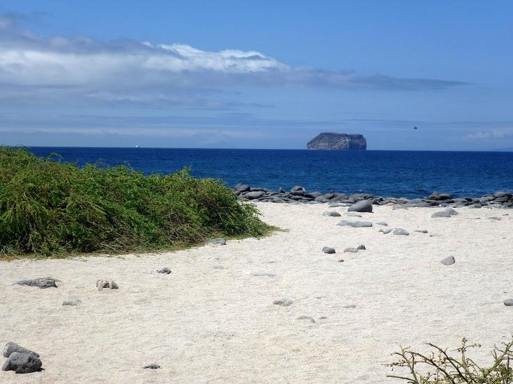 Beach at North_Seymour_Island_Galapagos