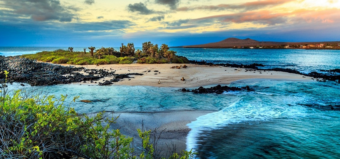 Go on a world tour. List of all travel blogs taking you to every country. Above photo is of the Galapagos Islands.