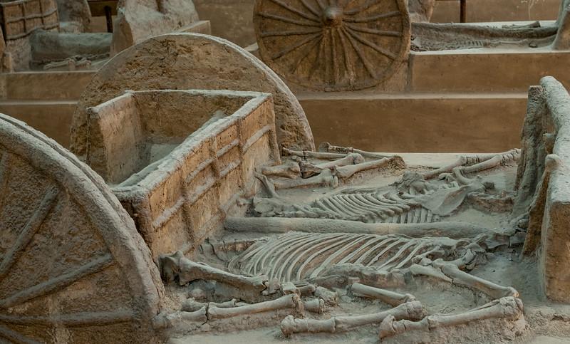 Yinxu_chariot burial China ancient city