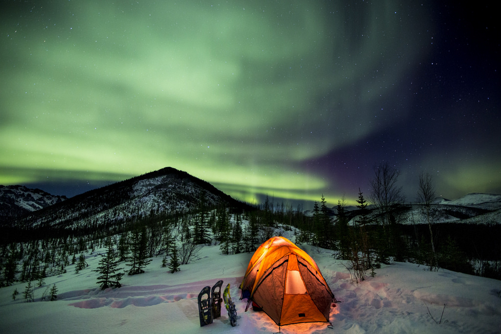 Northern Lights seen in Beaver Creek Wild and Scenic River Alaska. Aurora Borealis