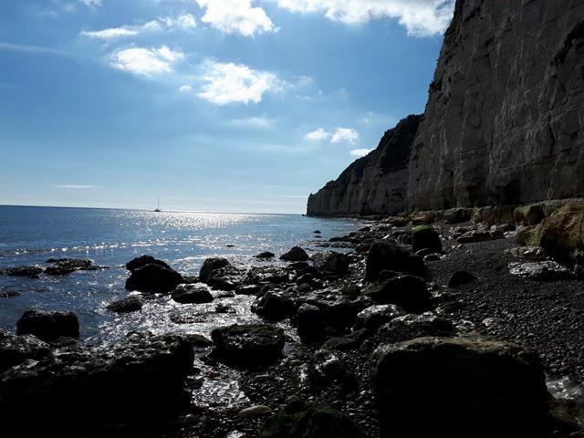 Beer Coastline Jurassic Coast England