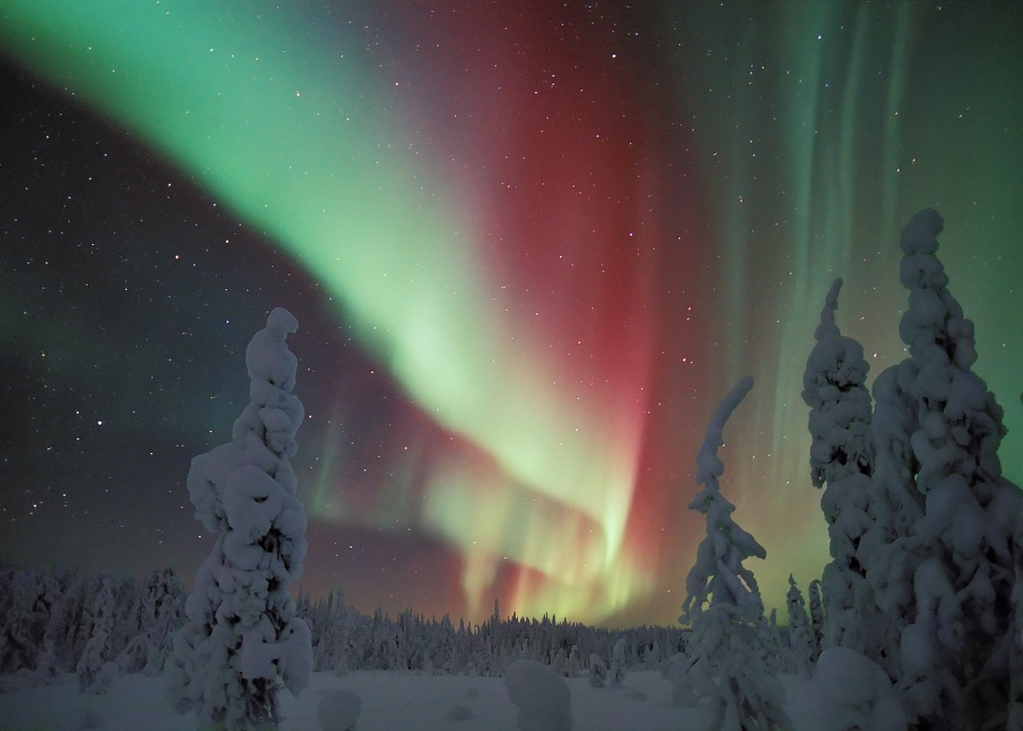 Northern_Lights_in_Snowy_Forest_Finland. Aurora Borealis