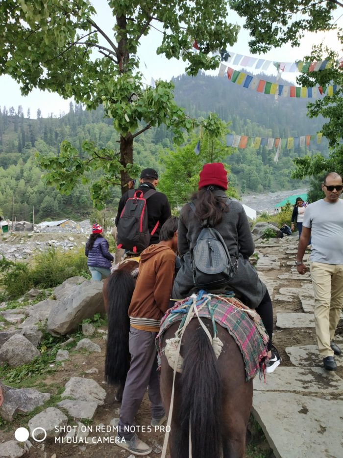 Horse riding and summer vacation in Manali India