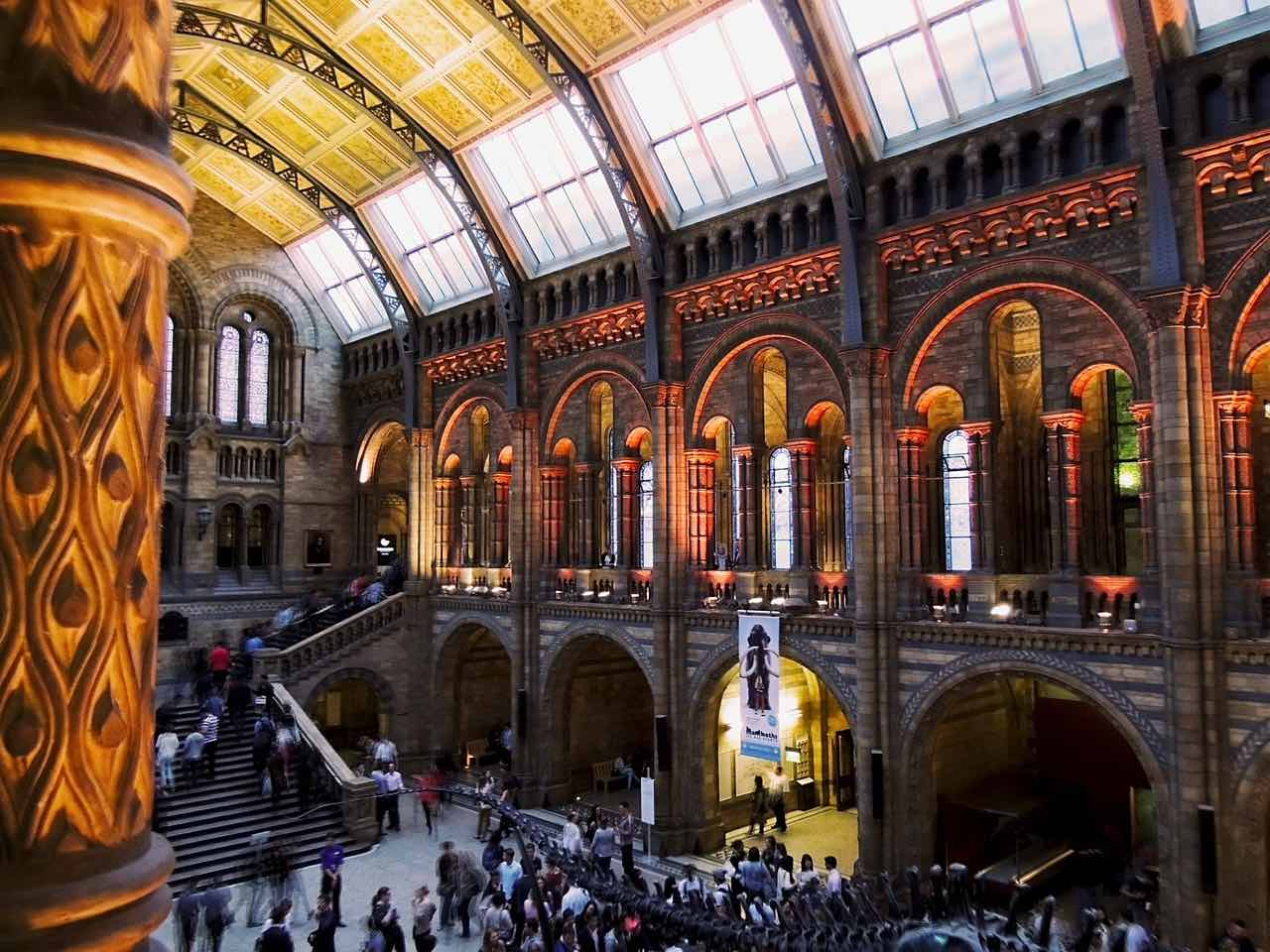 natural-history-museum_London_PD