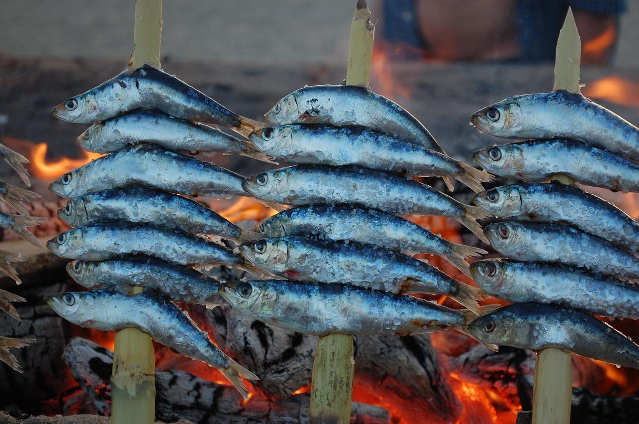Eating fish in Malaga_spain_PD