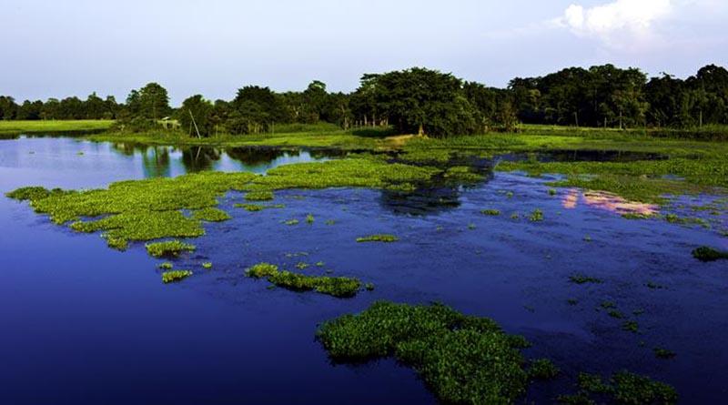 River Island Maujli_Assam_CC0