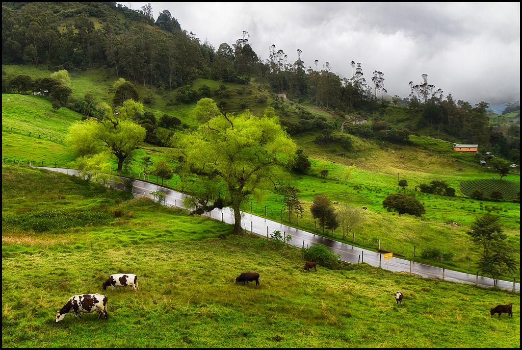 Road_to_Choachi_Colombia_CCBYSA2.0