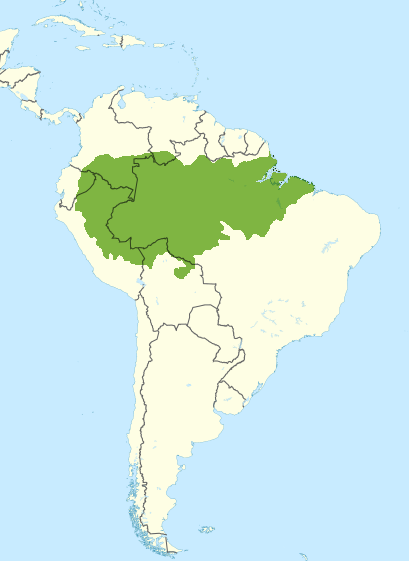 South_America_Amazon_rainforest_CCBYSA3.0