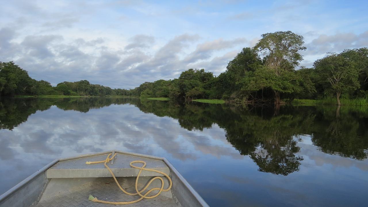 rio_guapore_river in amazon rainforest_PD
