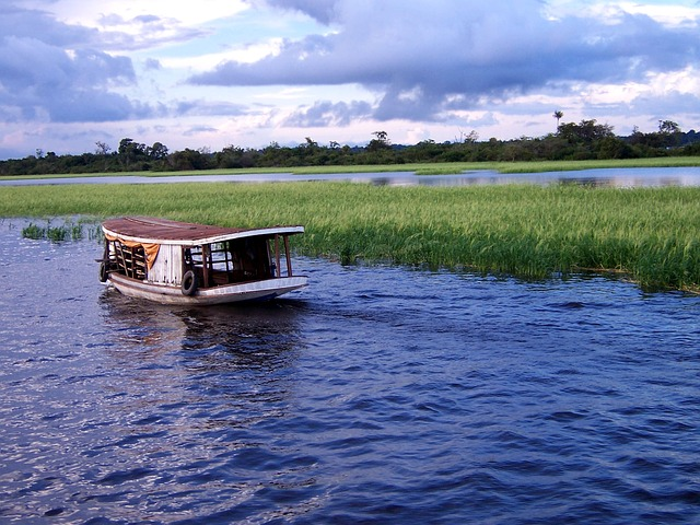 river boat_amazon_rainforest_PD