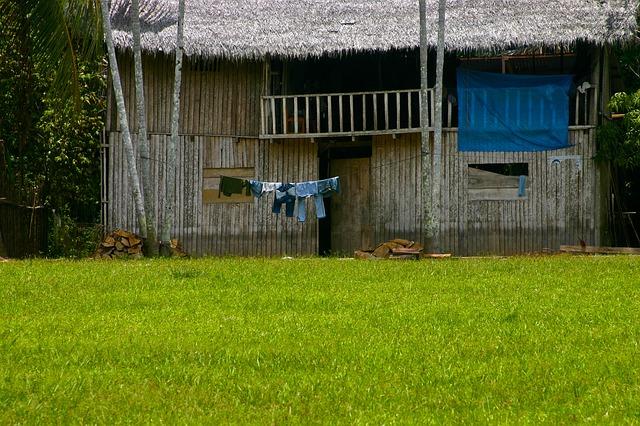 simple living hut_amazon rainforest_PD