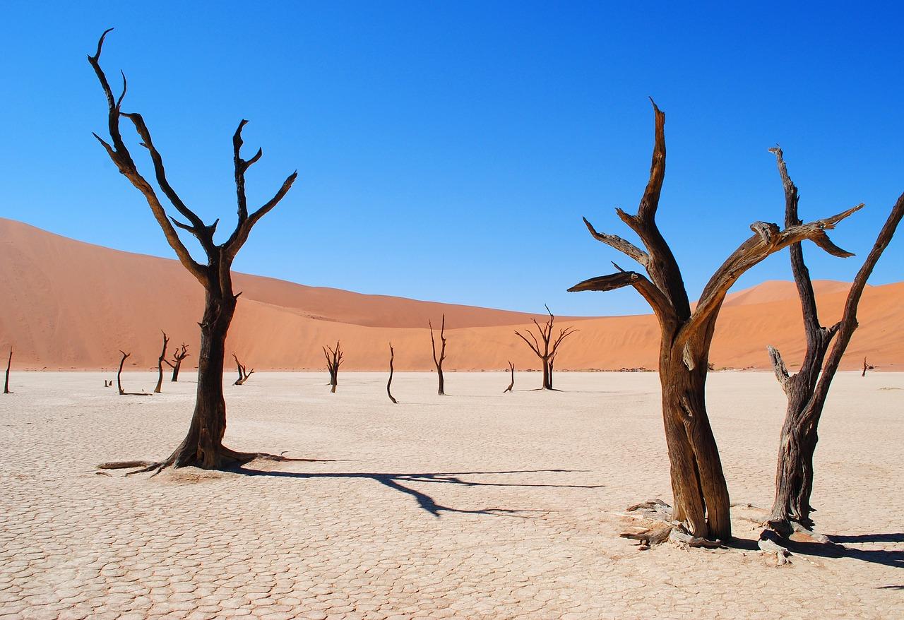 Deadvlei Desert_Namibia_Africa_PD