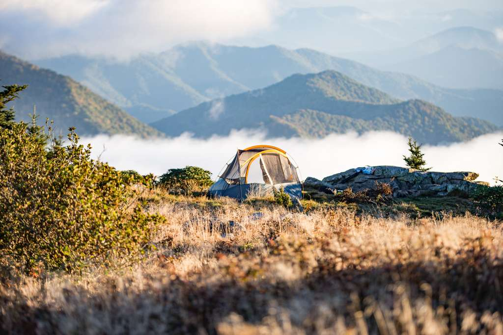 adventure-camp-camping-foggy-grass