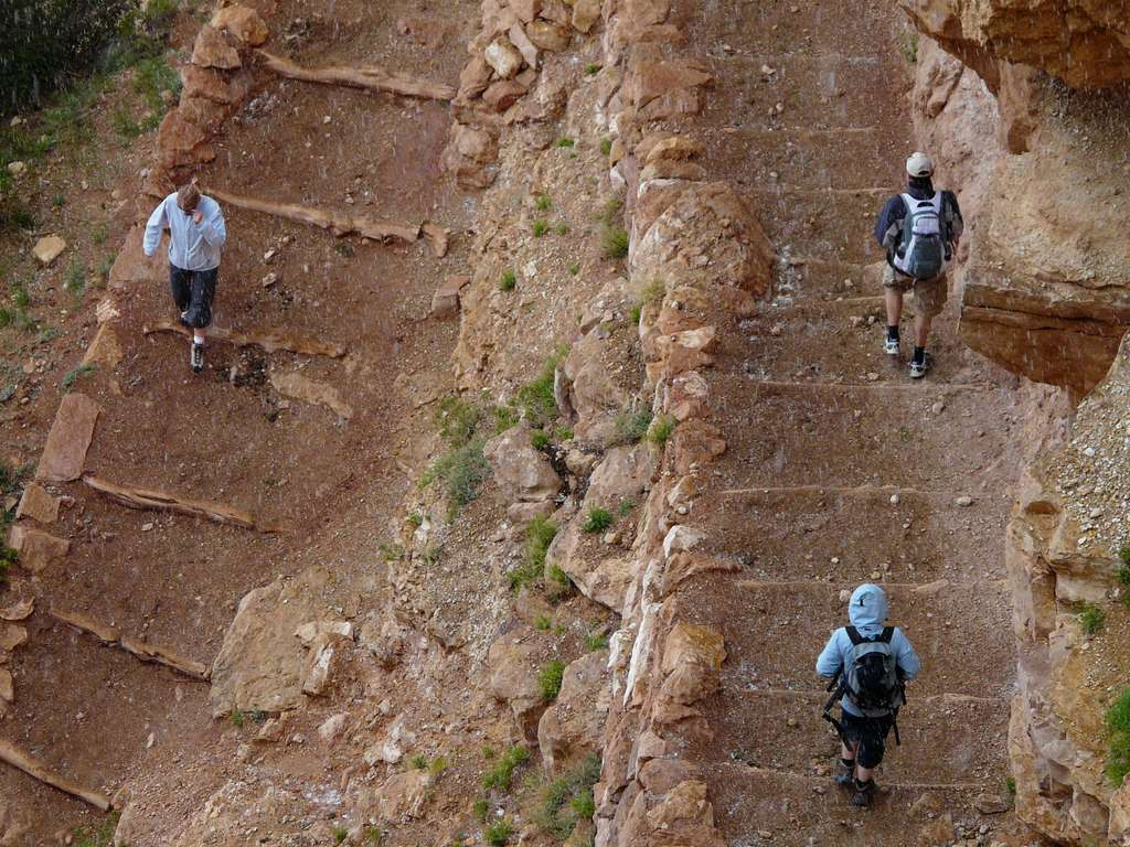 grand-canyon-trail-migratory-path