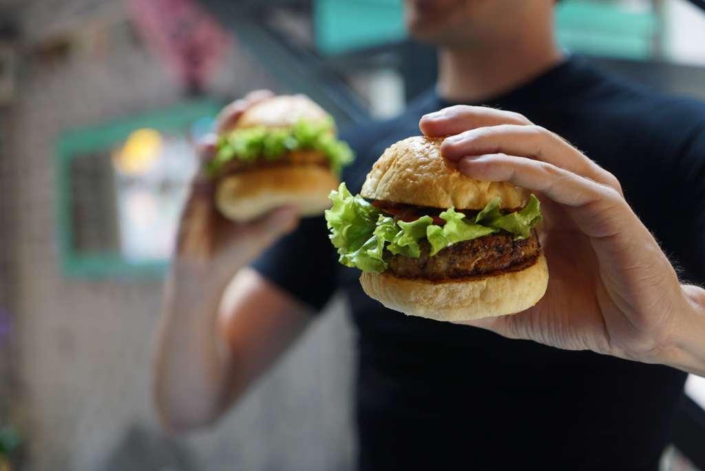 hamburger-vegan-vegetarian-tasty_PD