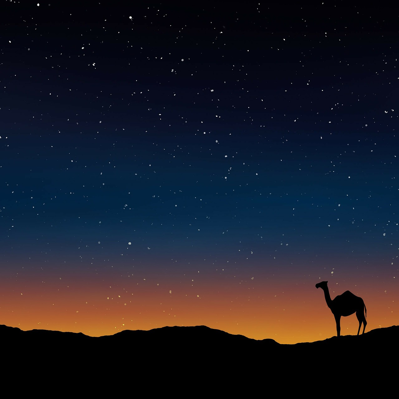 Camel in the Sahara Desert in Night with stars_PD