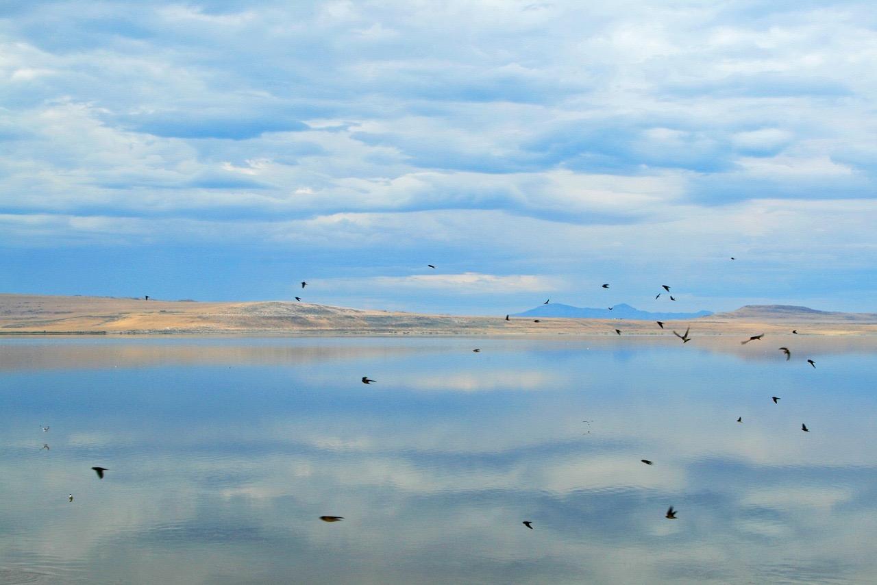 Great Salt Lake_Utah_PD