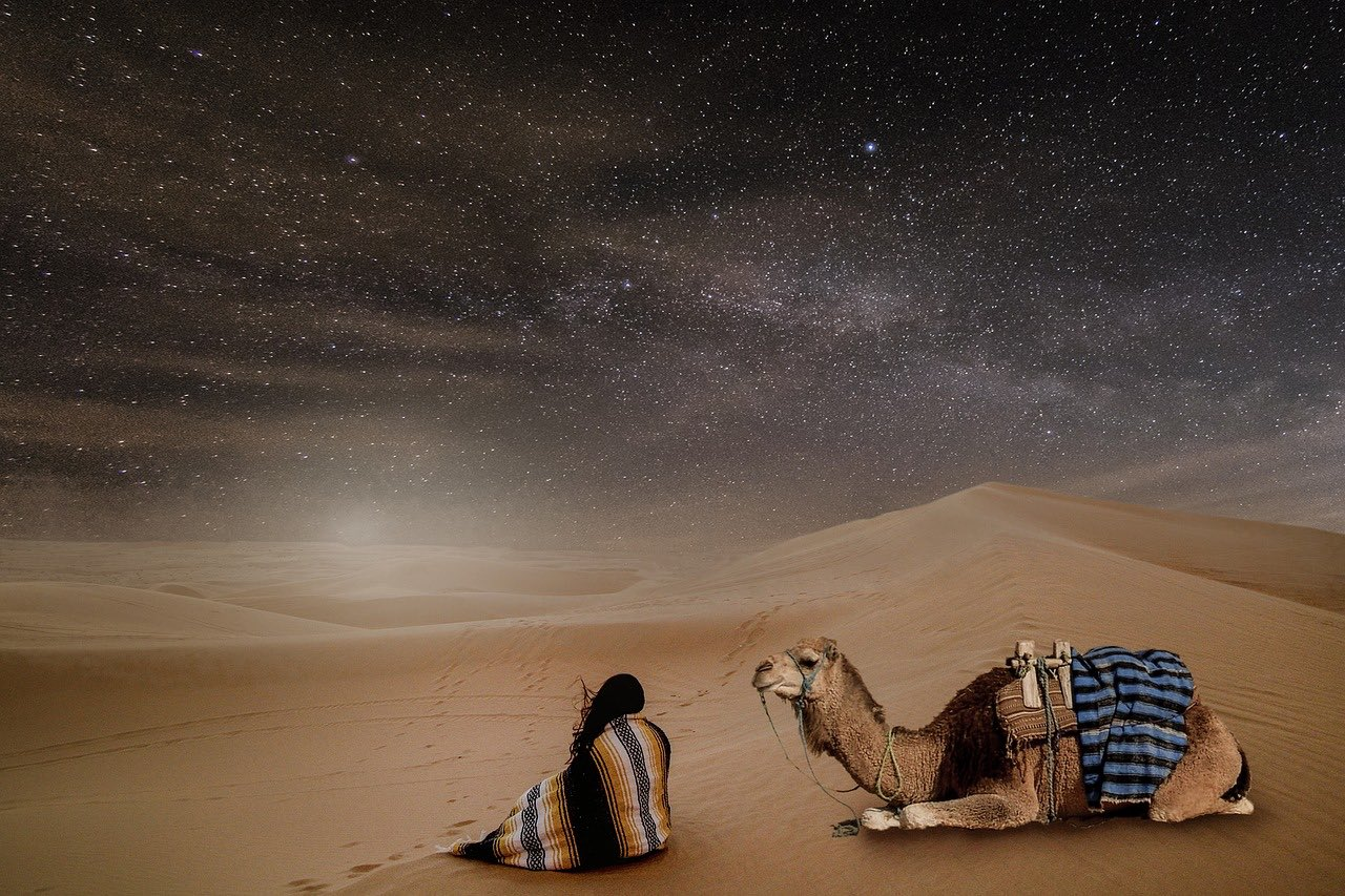 The Sahara Desert Solo Girl and a Camel in Night_PD