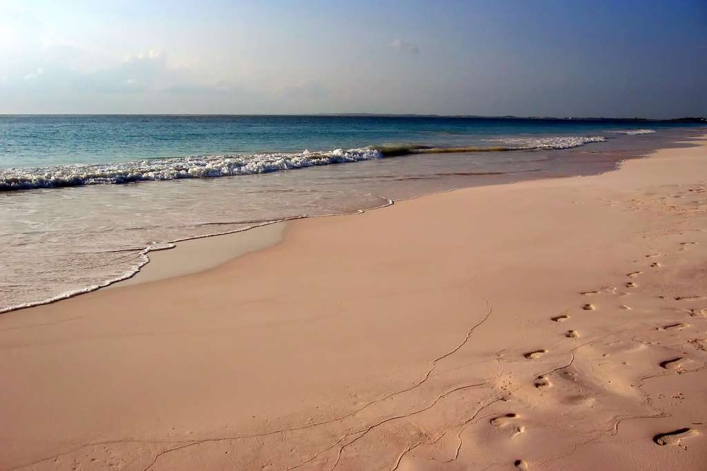 image_pink_sands_beach_CC