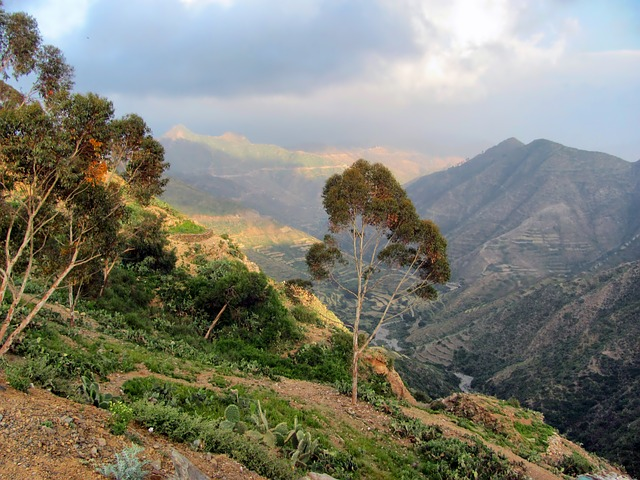 Eritrea Mountains Valley