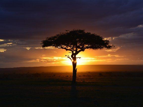 Kenya sunset_Africa_PD