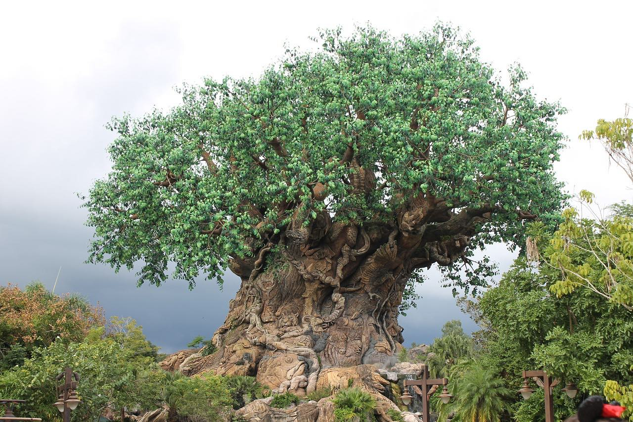 Tree Of Life in Disney's Animal Kingdom_PD