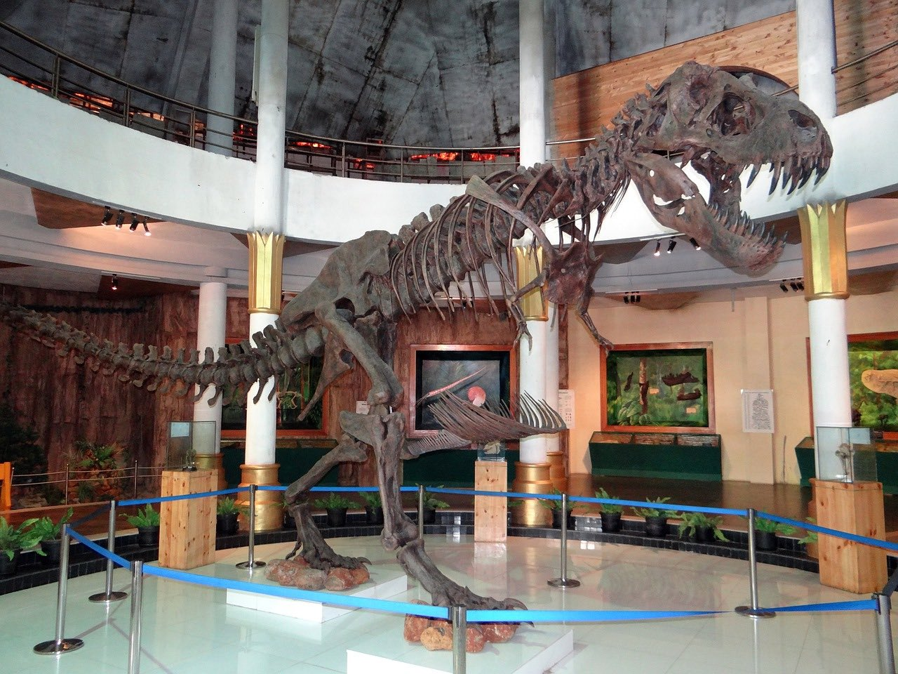 Natural History Museum_India_PD