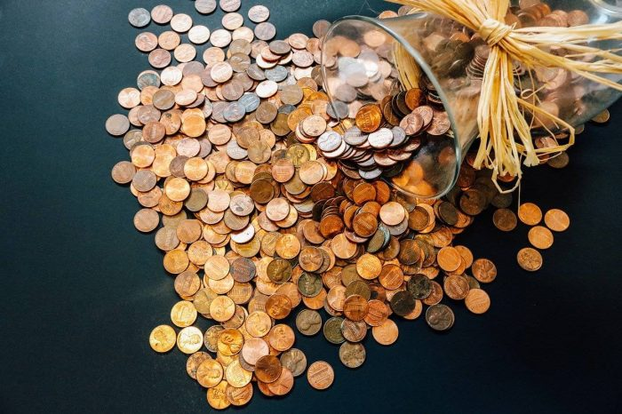 Pennies to Budget Money_PD